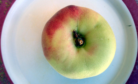 Saturn peaches, Donut peaches, Prunus persica, Slightly flattened fruit, donut shaped, with yellowish fruit blushed with red, white crisp sweet flesh