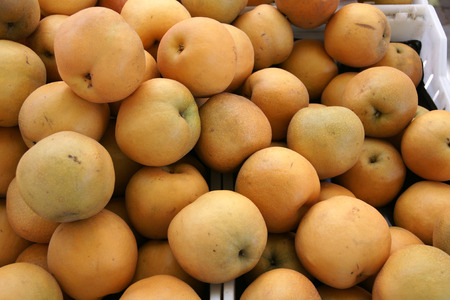 asian pear:  Asian pear, Pyrus pyrifolia, Chinese pear, with brownish yellow, more rounded fruits, with crisp grainy flesh with lots of water, fragrant, often eaten raw or peeled
