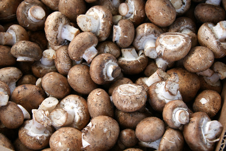 browns:  Browns mushroom, Swiss Browns mushroom, Italian Browns mushroom, Agaricus bisporus, edible mushroom similar to Button mushroom but tan to brown in colour, firmer texture, less moisture and deeper flavour