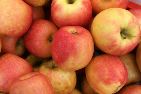 Pink Lady Apple Stock Photo