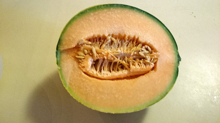 grooves:  Tuscan melon, Cucumis melo subsp melo var cantalupo, cultivar with yellow netted skin with longitudinal green grooves, yellow to salmon coloured scented flesh Stock Photo