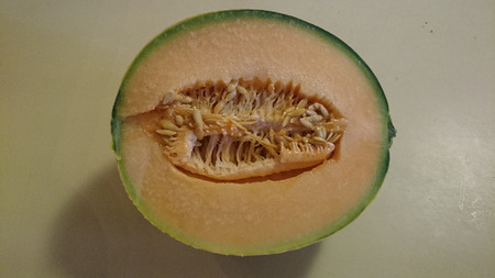 Tuscan melon, Cucumis melo subsp melo var cantalupo, cultivar with yellow netted skin with longitudinal green grooves, yellow to salmon coloured scented flesh Stock Photo