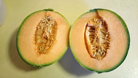 longitudinal:  Tuscan melon, Cucumis melo subsp melo var cantalupo, cultivar with yellow netted skin with longitudinal green grooves, yellow to salmon coloured scented flesh Stock Photo
