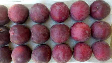 velvety: plum with purple black velvety skin