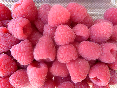 Raspberry, Red raspberry, European raspberry, Rubus idaeus, shrub producing red juicy fruits with hollow base and center with numerous small druplets, sweet and juicy