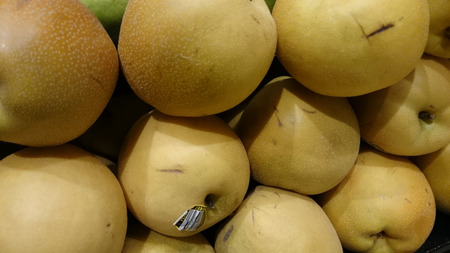 közel: Pyrus pyrifera, Yellow Asian pear, cultivar with large nearly rounded yellow fruit with small dots and white crisp, juicy sweet flesh Stock fotó