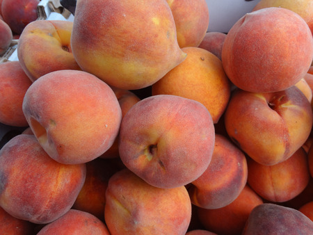 cal: Prunus persica Cal Red Peaches, Cal Red Yellow Peaches, golden colored with red blush, yellow firm mildly sweet flesh with low acidity. Stock Photo