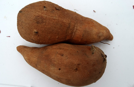 tuberous: Sweet potato, Ipomoea batatas, a vine with tuberous roots used as vegetable, skin brown to reddish, flesh creamish white, sweet, eaten baked as chat Stock Photo