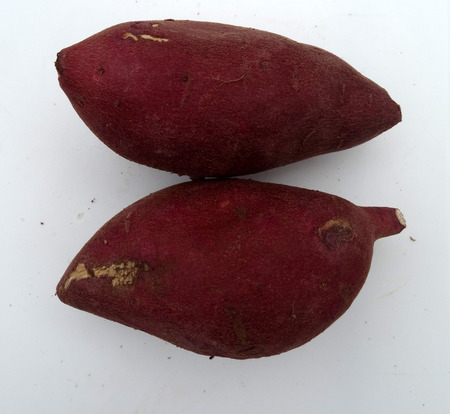 Japanese Sweet potato, Ipomoea batatas, tuberous roots with red skin and creamish white flesh, mildly sweet, often used baked, chaat preparations photo