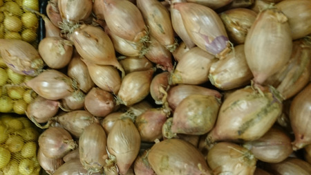 brownish: Shallot, Allium cepa aggregatum, also known as kanda and praan in India, has clustered bulbs with brownish skin