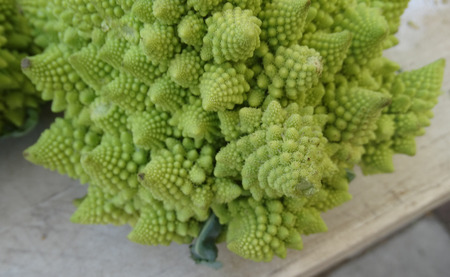 intermediate: Romanesco broccoli, Romanesco cauliflower, a fractal food intermediate between cauliflower and broccoli with self repeating designs of small cones, besides a novelty rich in nutrients and delicate taste