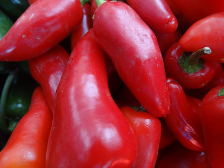 red jalapeno: Fresno chilli pepper, Capsicum annuum, conical in shape similar to Jalapeno pepper but with thinner walls, changing color from green to orange to finally red, used in salsa, rice and beans