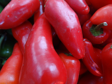 finally: Fresno chilli pepper, Capsicum annuum, conical in shape similar to Jalapeno pepper but with thinner walls, changing color from green to orange to finally red, used in salsa, rice and beans