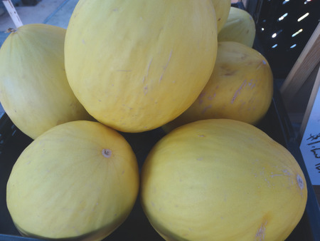 lacking: Canary melon, Cucumis melo inodorus, somewhat elongated melon with smooth orange yellow skin and white crisp flesh lacking musky smell.