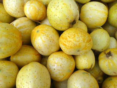 nearly: Lemon cucumber, Cucumis sativus Lemon, cultivar with small nearly globose lemon yellow fruits with tubercle remnants and pale greenish white flesh, used in salads.