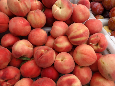 heavily: White peach, Prunus persica, cultivar with white to yellowish skin heavily blushed with red and white juicy sweet flesh surrounding rough stone