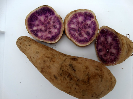 Okinawa sweet potato, Ipomoea batatas Okinawa, cultivar with purple and pink patches in flesh, sweet, pleasant flavor and rich in vitamin A, B6 and C.