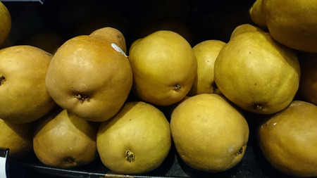 communis: Pyrus communis, Bosc pear, cultivar grown in California, fruit with narrowed neck, russeted skin and dense sweet flesh Stock Photo