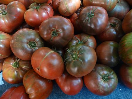 caoba: Solanum lycopersicum, tomate raya Chocolate, cultivar con frutas en forma un tanto irregular, de color con rayas de color verde oliva oscuro de caoba, delicioso en sabor Foto de archivo