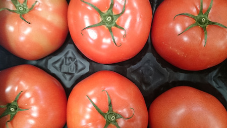 numerous: Beefsteak tomato, Beef tomato, Solanum lycopersicum, cultivar with thick skin and meaty flesh with numerous seeds, suitable for slicing.