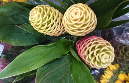 Zingiber spectabile, Beehive ginger, Malaysian ginger, perennial herb with green tapering leaves and yellow spike, often tinged red, with bracts open above giving appearance of beehive