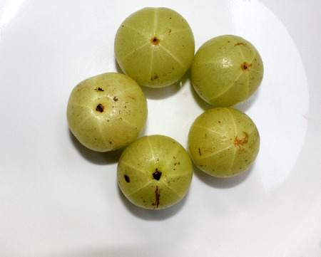 the greenish: Phyllanthus emblica, myrobalan, Indian gooseberry, tree with small closely set leaves, giving impression of pinnate leaves and producing greenish yellow fruits, used in pickles, or eaten fried and salted