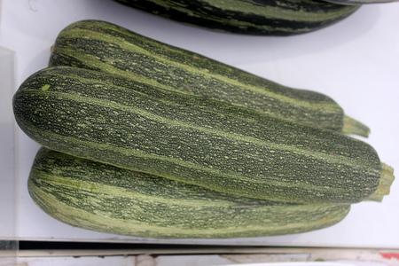 cucurbita: Cucurbita pepo, Australian Green summer squash, cultivar with cylindrical fruits narrowed upwards, dark green with light green narrow stripes and dots, cooked vegetable