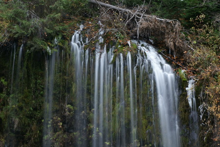 are fed: Mossbrae falls in Dunsmuir, California. The beautiful waterfalls in the Shasta Cascade area, 15 m high and 53 m wide, fed by several springs,  flow into Sacramento river. Stock Photo