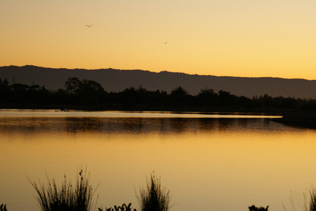 stronger: Dusk at Shorline Park Lake, Mountain View, California, USA, with beautiful golden view of the clear sky, stronger near the horizon merging slowly into light blue sky.