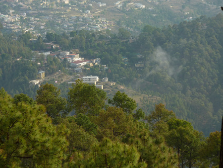 closer: View of Nainital from road above, with buildings, Naini lake, forested mountain slopes, closer view of pine trees.