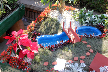 tiers: Mini Garden on a cart, complete with swimming pool, bridge, lawn, walking tiles, succulents and flowering plants
