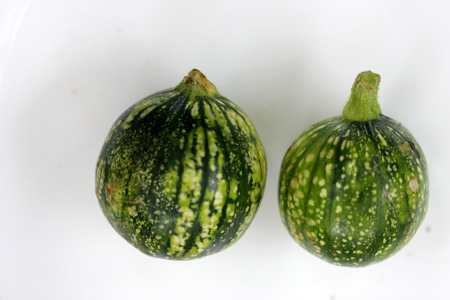 usually: Cucurbita pepo, Rondini Tondo di Nizza, Tinda, 8 ball squash, cultivar with globose fruits usually smaller than 10 cm, used as vegetable when raw, in variety of skin markings Stock Photo