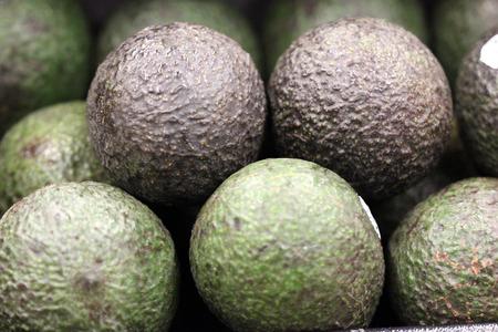 bumpy: Persea americana, Hass Avocado, dark colored medium sized fruit with bumpy skin, flesh creamy with excellent flavor