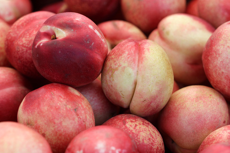 White Nectarine, Prunus persica var. nucipersica, cultivar of nectarine with red and white blush on skin and white crisp juicy flesh being less acidic than yellow variety Stock Photo