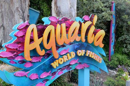 aquaria: Aquaria World of Fishes, SeaWorld, San Diego, California, USA with huge collection of fishes all over the world Editorial