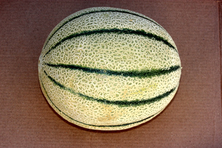 grooves: Cucumis melo, Tuscan melon, Tuscan Cantaloupe (in USA), Golden netted fruit with green grooves and crisp sweet golden yellow flesh