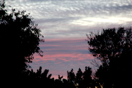 partially: Dusk in partially cloudy sky behind trees, Fremont, California, just after the sunset, orange red above the clear sky above horizon with grey clouds higher up Stock Photo