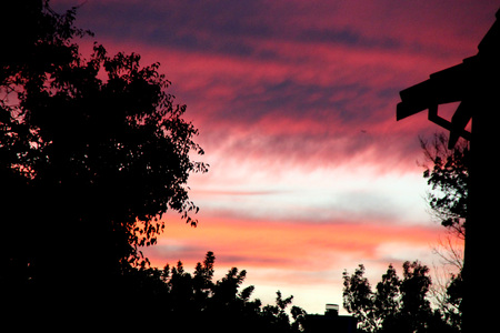 Dusk in partially cloudy sky behind trees, Fremont, California, just after the sunset, orange red above the clear sky above horizon with grey clouds higher up Stock Photo
