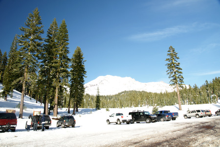 frequented: Snow covered Mount Shasta, Siskiyou County, California, with tall forest trees, volcanic mountains, clear blue sky, frequented by tourists.