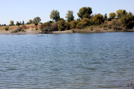 boating: Quarry Lake, Fremont, California recreational area with facilities for swimming, fishing and boating, with several birds around, marked area for swimming along the beach.