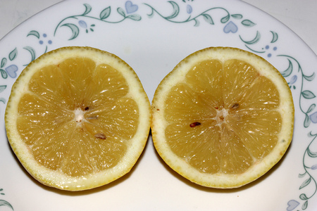 acidic: Section of Lemon fruit, Citrus limon,  evergreen tree with unifoliate leaves, white to purple flowers in clusters and hesperidium berry with tough ring and acidic juice vesicles in distinct segments. Stock Photo