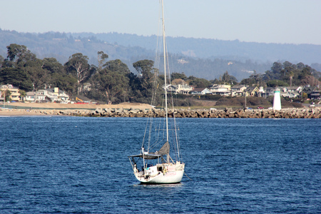 Santa Cruz Harbor Beach, California, USA with vast sandy ground pounded regularly by tides, weeds washed ashore, California Gulls, board walk, boats on rentals, pleasant view of sea.
