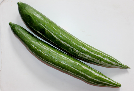 Snake gourd, Serpent gourd, Chichinda, Trichosanthes cucumerina var. anguina, cultivated vine with up to 2 m long fruit with white stripes, turning red when mature, used as vegetable.