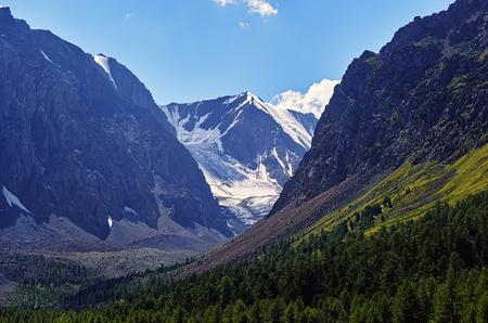 Landscape of a beautiful sunny mountain valley with a clear blue sky, glaciers, rocks and cedar forest growing on the slopes of the mountains near the Aktru river. Mountain Altai.