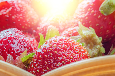 Garden red Strawberries with suns glare. Natural, juicy, bright Strawberries for concept design. Harvest strawberry. Berry background.