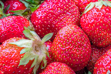 Garden red Strawberries. Juicy, bright Strawberries for concept design. Harvest strawberry.