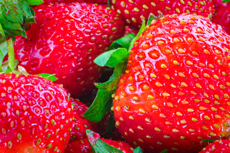 Tumble of sweet Strawberries. Juicy, bright Strawberries for concept design. Harvest strawberry. Banco de Imagens