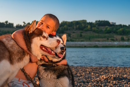 Funny baby hugging dogs. Laughing boy hugged two Siberian huskies and looks at the camera. Concept of outdoor recreation with pets. Copy space.