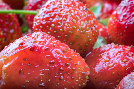 Ripe red fresh strawberries for culinary design
