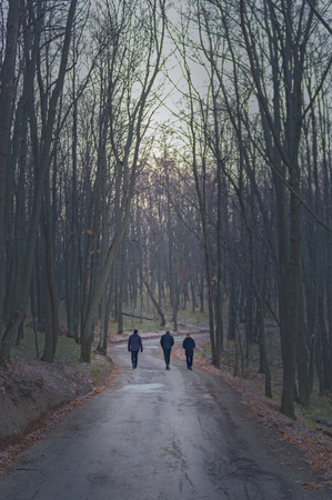 Walking three man in autumn deserted forest on the road to frost, rear view